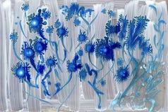 Flores estrangeiras azuis abstratas da aquarela Fotografia de Stock