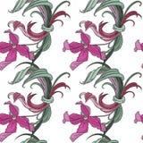 Flores exóticas Imagenes de archivo