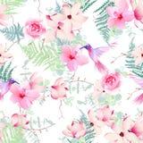 Flores exóticas com a cópia sem emenda do vetor dos colibris Imagem de Stock