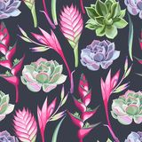 Flores exóticas y succulents inconsútiles libre illustration