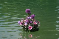 Flores expuestas en Floraart, exposición del jardín del international 52 en el lago Bundek en Zagreb Imágenes de archivo libres de regalías