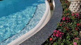 Flores exteriores en el borde de la piscina