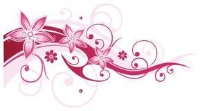 Flores, extracto, verano, rosado Imagen de archivo