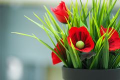 Flores falsificadas no potenciômetro preto Fotografia de Stock Royalty Free
