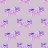 Flores feericamente para a decoração sem emenda Imagem de Stock Royalty Free