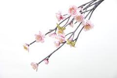 Flores feitas da tela Foto de Stock Royalty Free