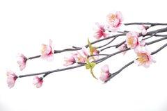 Flores feitas da tela Fotografia de Stock