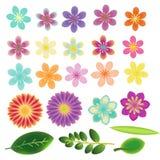 Flores fijadas libre illustration