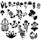 Flores fijadas Imagenes de archivo