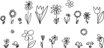 Flores fijadas Fotos de archivo