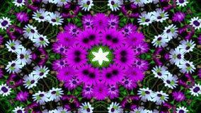 Flores Flora Kaleidoscope imagens de stock