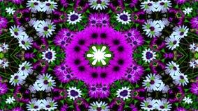 Flores Flora Kaleidoscope fotos de stock