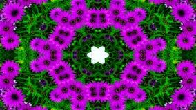 Flores Flora Kaleidoscope foto de stock
