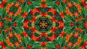 Flores Flora Kaleidoscope imagem de stock royalty free
