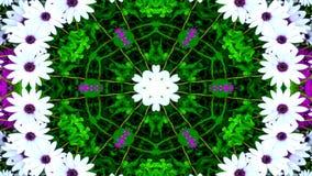 Flores Flora Kaleidoscope fotografia de stock royalty free
