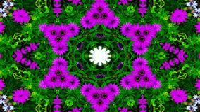Flores Flora Kaleidoscope fotos de stock royalty free