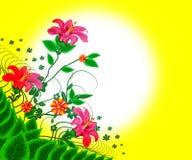 Flores florais ilustração royalty free