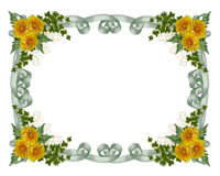 Flores florais do amarelo da beira Foto de Stock Royalty Free