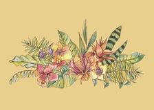 Flores florecientes de la orquídea de la acuarela natural exótica del vintage, banan stock de ilustración