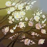 Flores florecientes de un cerezo en un fondo coloreado libre illustration