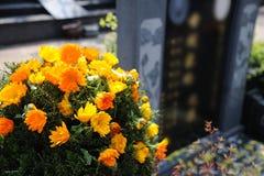 Flores fúnebres para las condolencias Imagen de archivo libre de regalías