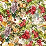 Flores, folhas e Rowan bonitos Fotografia de Stock