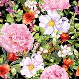 Flores, folhas, grama de prado no fundo do preto do contraste Teste padrão floral sem emenda watercolor ilustração do vetor