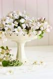 Flores frescas da maçã na tabela Fotos de Stock