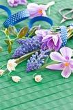 Flores frescas da mola Fotos de Stock