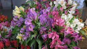 Flores frescas de la azalea en el florero con descensos del agua, venta en la opinión del primer de la floristería almacen de metraje de vídeo