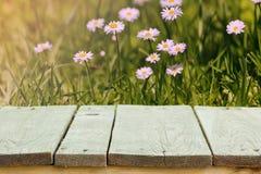 Flores frescas del verano, hierba y luz del sol, y suelo de madera Imagen de archivo