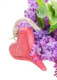 Flores frescas lilás com coração vermelho Fotos de Stock Royalty Free