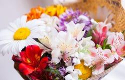 Flores frescas que estão na janela home foto de stock royalty free