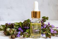 Flores frescas y aceite en una botella de cristal en un tablero de madera Petr?leo esencial imagenes de archivo