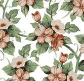 Flores. Fundo bonito com flores. Imagens de Stock Royalty Free