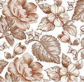Flores. Fundo bonito com flores. Fotografia de Stock