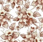 Flores. Fundo bonito com flores. Imagem de Stock