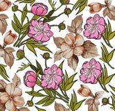 Flores. Fundo bonito com flores. Fotografia de Stock Royalty Free