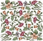 Flores. Fundo bonito com um orname da flor Imagens de Stock