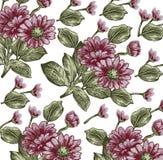Flores. Fundo bonito com um orname da flor Fotos de Stock Royalty Free