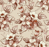 Flores. Fundo bonito com uma flor. Fotografia de Stock