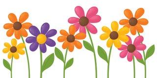 Flores funky Fotografia de Stock Royalty Free