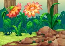 Flores gigantes na floresta ilustração royalty free