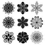 Flores gráficas Imagenes de archivo