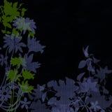 Flores gráficas na silhueta Fotografia de Stock