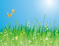 Flores, grama e borboleta ilustração royalty free