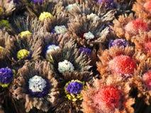 Flores grandes hechas a mano de diversas plantas, Lituania Fotos de archivo
