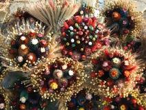 Flores grandes hechas a mano de diversas plantas, Lituania Fotos de archivo libres de regalías