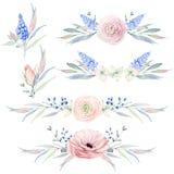Flores Handpainted da aquarela ajustadas no estilo do vintage ilustração royalty free