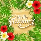 Flores havaianas do verão no fundo arenoso ilustração royalty free